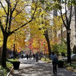 2017 Global Justice Conference at Yale: 27 – 29 October 2017